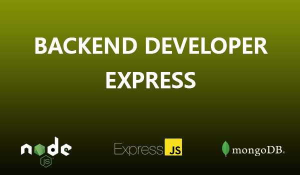 Node Express Developer
