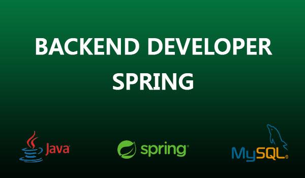 Java Spring Developer