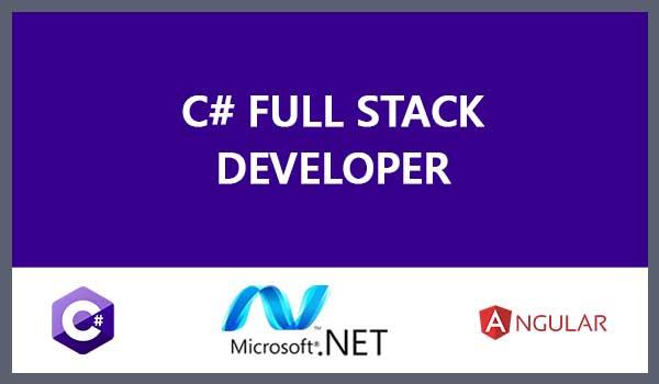 C#/.NET-Angular Fullstack